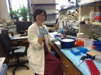 Lihong Shi, Lab Manager