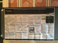 AACR Prostate Cancer Poster 2017