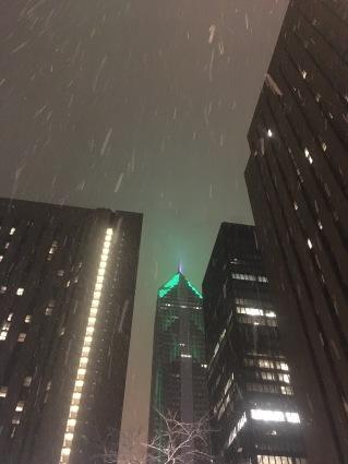 Chicago in the Snow 2018