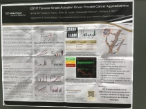 AACR Annual Meeting Poster 2018