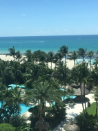 In Miami for Tumor Microenvironment Workshop 2019